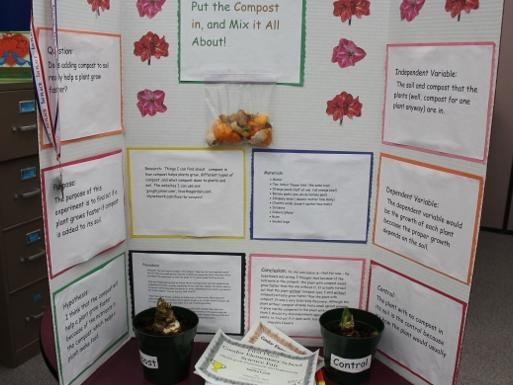 Compost science project