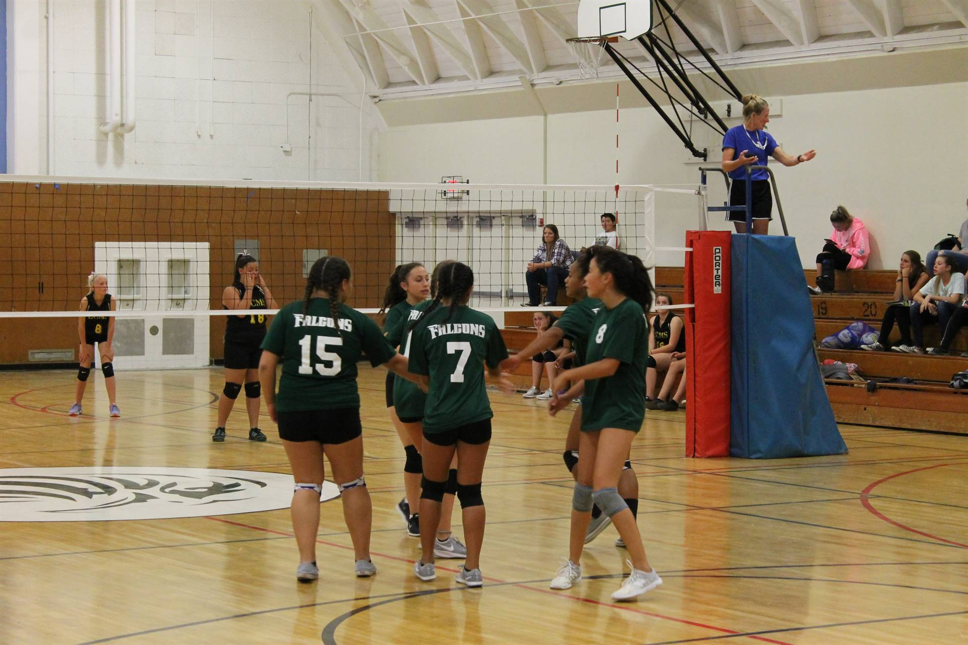 Picture of Volleyball team