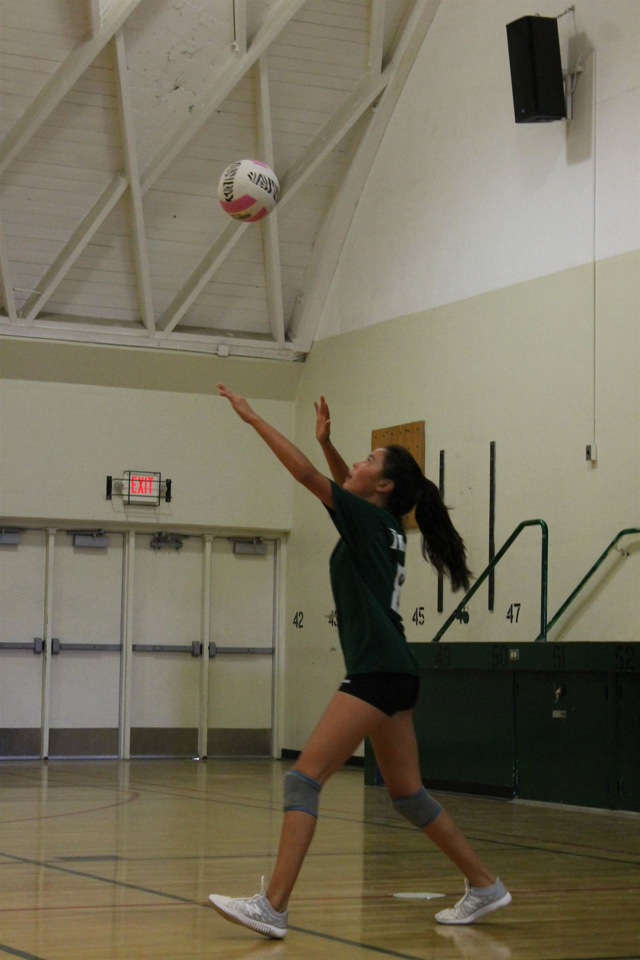Picture of volleyball girl serving