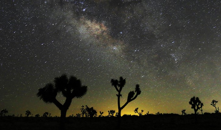Night Time Sky over the Desert