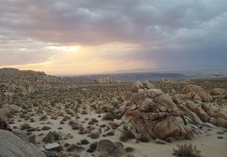 Rain in the Desert- Photo taken by Sarah Bergeron