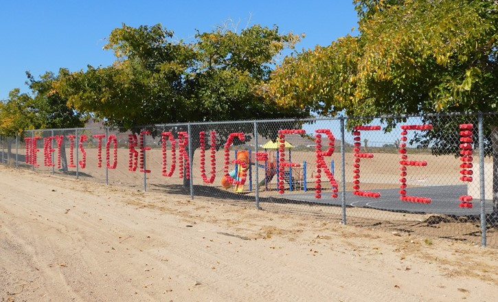 Fence decorated for Red Ribbon Week- The Key is to be Drug Free!